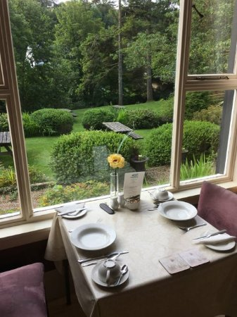 Kilmory, UK: Breakfast view toward stream