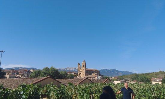Эльсьего, Испания: vistas desde el viñedo