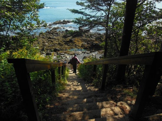 Lubec, ME: stairs to the beach