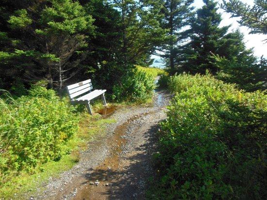 Lubec, ME: part of coast trail