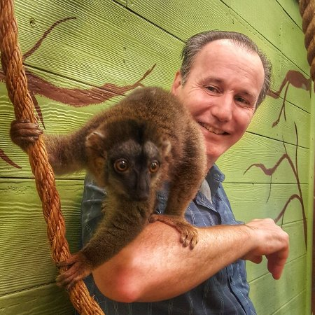 แบรนสัน, มิสซูรี่: Lemur