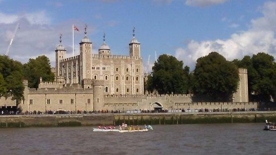 Thames Cruises