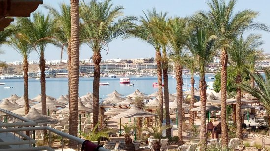 Oonas Dive Club Hotel: This view from all balconies you can see the beach and the naama bay, night view is even greater