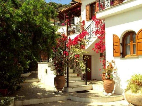 Agia Kyriaki, กรีซ: Blooming garden