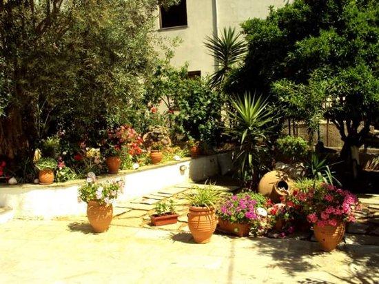 Αγία Κυριακή, Ελλάδα: Blooming garden