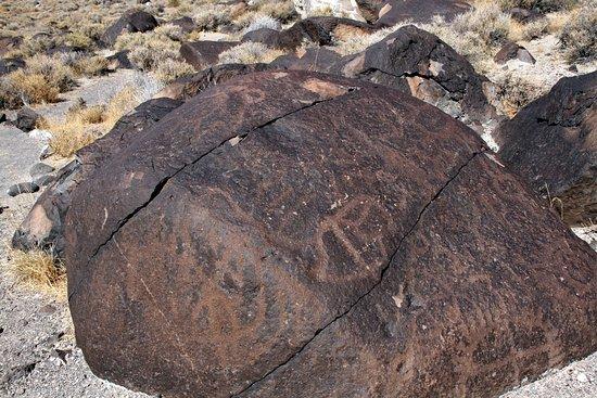 Fallon, NV: Petroglyphs at Grimes Point