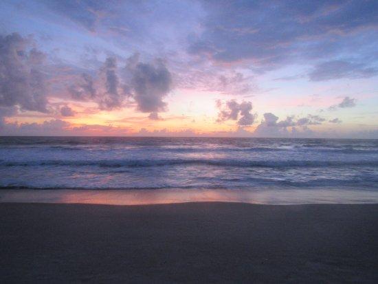 Indialantic, FL: IMG_4474_large.jpg