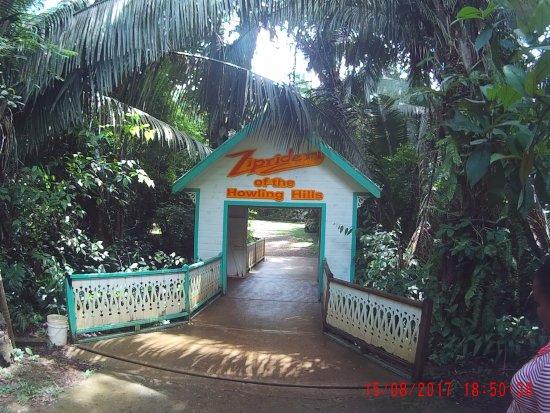 Belize Zip Line Canopy Tours: L'ingresso al centro