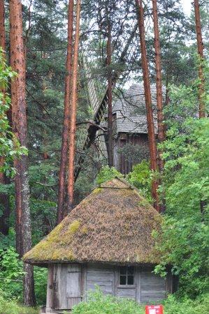 Latvian Ethnographic Open Air Museum: Мельница