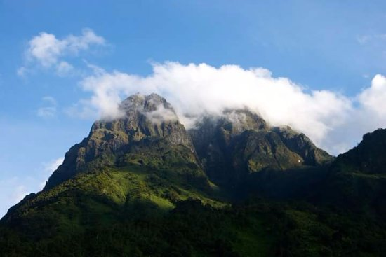 Fort Portal, Uganda: Portal peaks of Rwenzoris Uganda can be viewed on our 3 days hike book now $ 399