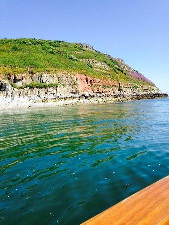 Starida Puffin Island Cruises & Sea Fishing Trips: photo2.jpg