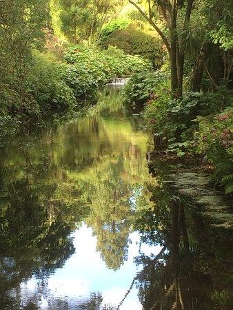 Ashford, İrlanda: photo5.jpg