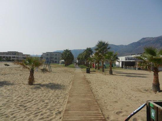 Hotel Delfina Beach: Bagnasciuga