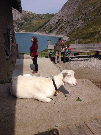 Oostenrijkse Alpen, Oostenrijk: photo3.jpg