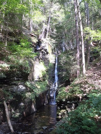 Dingmans Ferry, PA: Silver Thread Falls photo