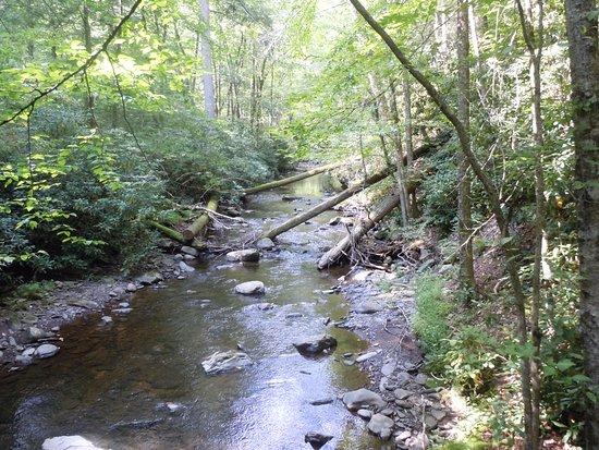 Dingmans Ferry, Pensilvania: Stream1