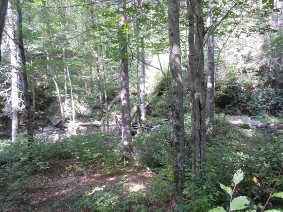 Dingmans Ferry, Pensilvania: Stream 4