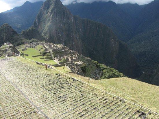 Machu Picchu Terra : Machu Picchu