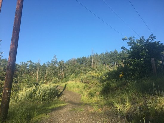 Eugene, OR: pretty part of the path once one gets closer to the top