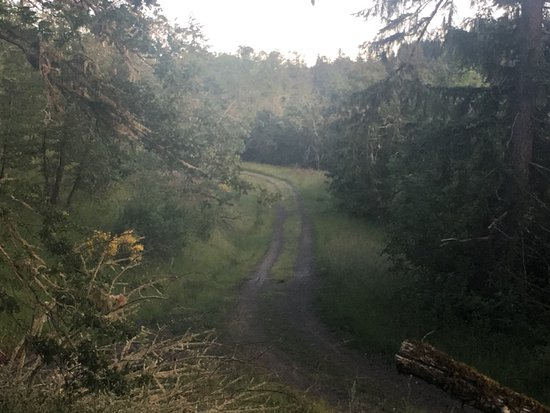 Eugene, OR: even prettier and tempting path after reaching the top