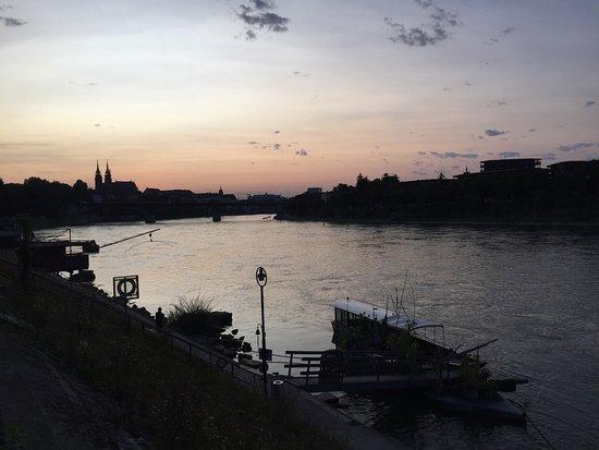Rheinfähre Bild