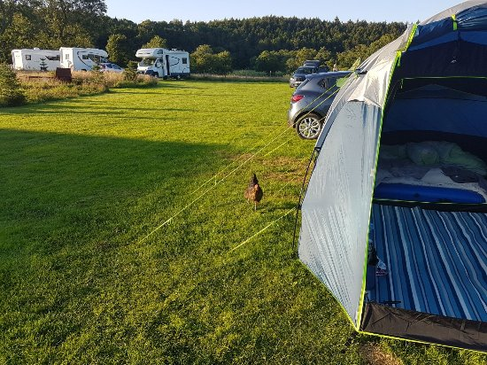 Walkmill Campsite : IMG-20170803-WA0034_large.jpg