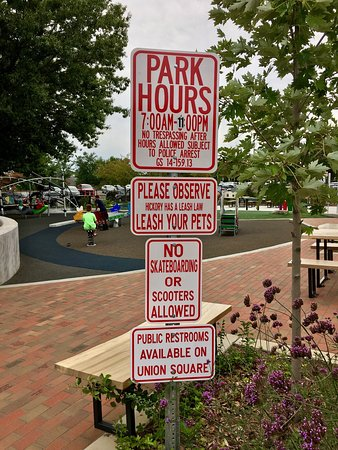 Lowes Foods City Park: Nice city park for the kids!