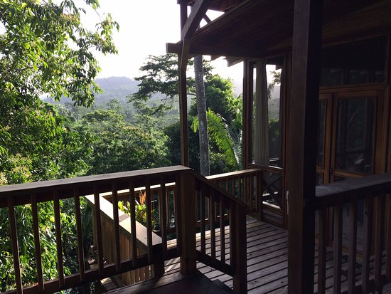 Ian Anderson's Caves Branch Jungle Lodge: Deck of Treehouse