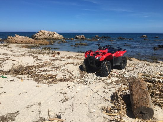 Can-Doo ATV Rentals & Adventures