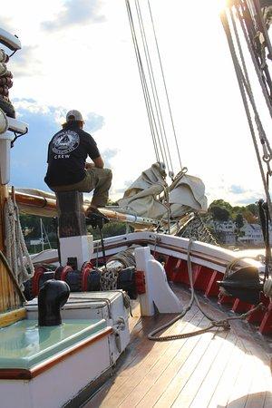 Schooner Appledore II Windjammer Cruise: Headed back into the harbor.