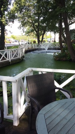 Cottons Hotel & Spa: Pond in front of hotel