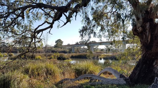 Murray Bridge, Australia: Swanport Wetlands