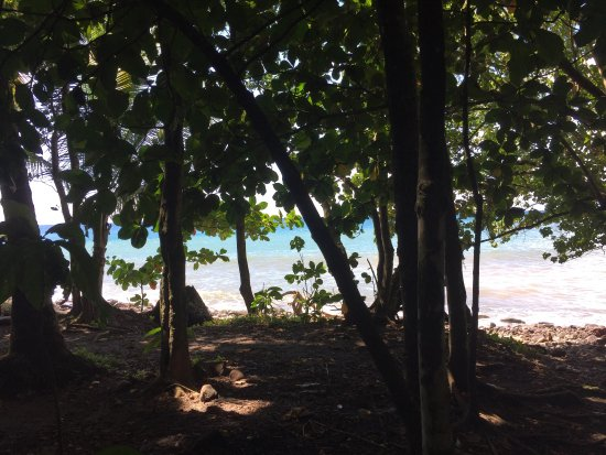 Anse Couleuvre : photo1.jpg