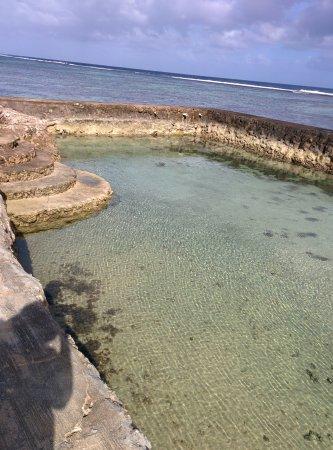 Kanokupolu, Tonga: IMG_20170830_092712_large.jpg