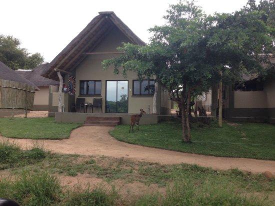 Umkumbe Safari Lodge: photo9.jpg