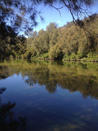Hornsby, Australia: 湖がとても綺麗!