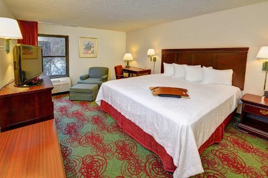 Hampton Inn DeBary/Deltona: King Room