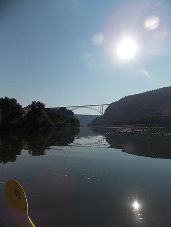 Perrine Bridge from Snake River