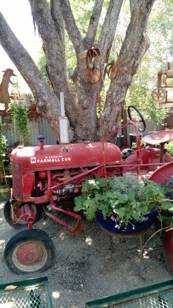 Loomis, CA: Another vintage item in the garden area.