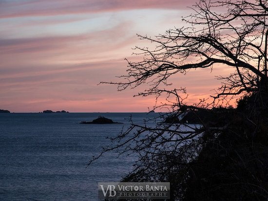Isla Boca Brava, Panamá: Sunset from the restaurant roof/crows nest