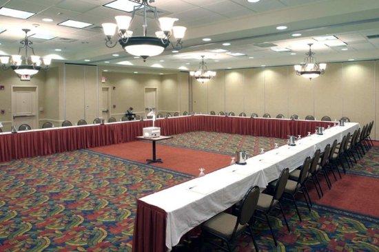 Hilton Garden Inn Buffalo Airport: Divisible Meeting Space