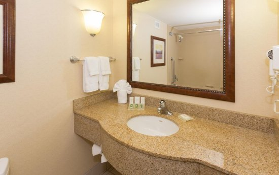 Hilton Garden Inn Buffalo Airport: Standard Bath