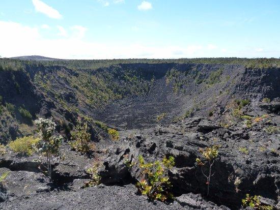 Big Island Aina Tours: Volcanoes National Park Crater