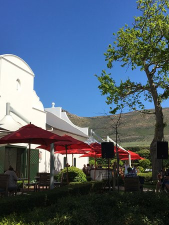 Catharina's Restaurant at Steenberg: photo0.jpg