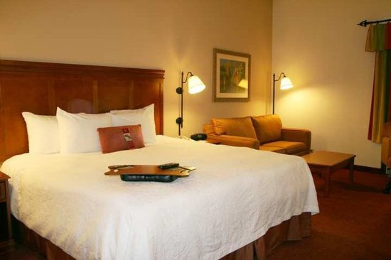 Hampton Inn Austin/Airport Area South : Guestroom