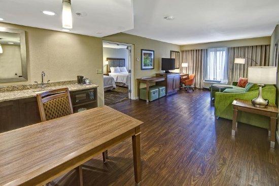 Fletcher, Kuzey Carolina: 2 queen suite living room