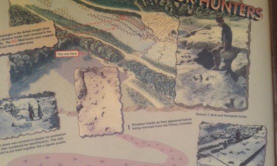 Dinosaur Valley State Park: 20170910_124949_large.jpg