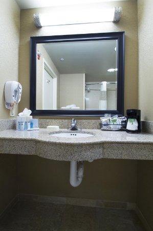 Hampton Inn Harriman Woodbury: Accessible Bathroom