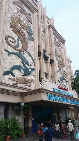 Taraporewala Aquarium: photo0.jpg