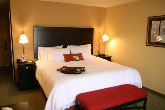 Hampton Inn Jacksonville: King Room